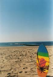Skimboard am Strand