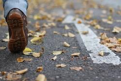 Fuß Straße Herbst Pfeil