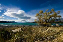 Lake Tekapo (NZ)