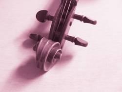 Pink-Violin II