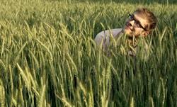 Marc sucht das Getreidefeld
