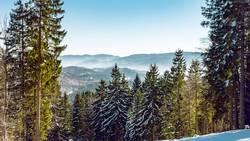 Blick vom Unterberg auf die Voralpen.