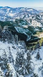 Blick vom Unterberg auf das Alpenvorland