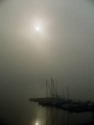 steg im nebel