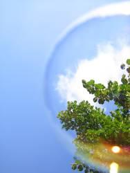 Welt in einer Blase
