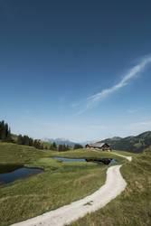 Alphütte im Berner Oberland
