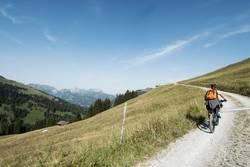 E-Bike Tour im Saanenland