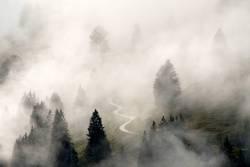 Nebelstimmung im Kiental