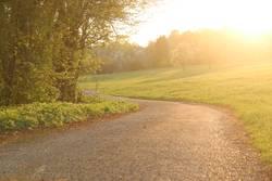 walk in golden light