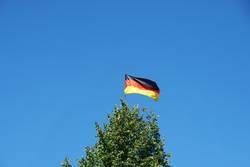 Deutsche Flagge auf Baumspitze
