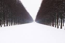 Herrenhäuser Allee im Schnee