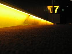 Die Gelbe Sieben