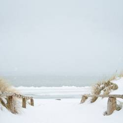 Schneeweiß