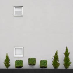 Treescape 2