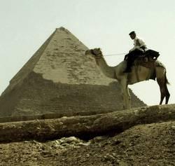 Polizei auf Kamel
