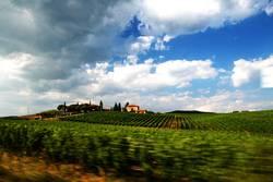 Im Rausch der Toskana