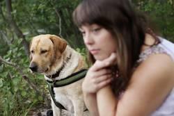 Labrador mit jungen Frau im Wald
