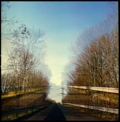 Doppelbelichtung - eine Straße mit Bäumen die zur Bücke führt