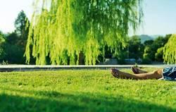 Flip-Flops im Park