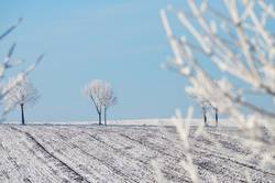 Winterpuderfeld