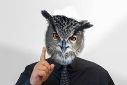 Man with owl head raises his finger