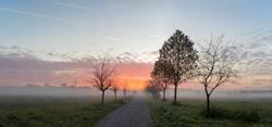 Sonnenaufgang über einem Feldweg