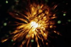 ray of lights 2