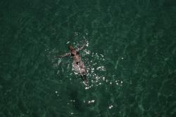 Die Leichtigkeit im Meer
