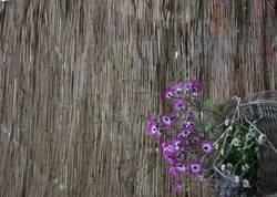 Blumen eingeflochten