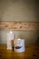Basteltipp mit Birkenholz