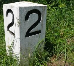 N° 22