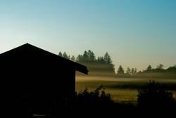 Nebelschwaden
