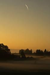 Morgendlicher Schleier