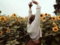 Junge Frau im Sonnenblumenfeld