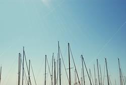 Segel ohne Boote