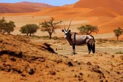 weites Land Namibia