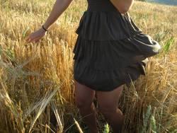 Tanz im Kornfeld