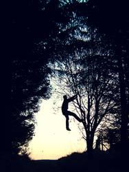 Der Herr der Bäume