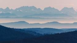 Schwarzwald und Alpen