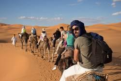 Dromedar Tour durch die Wüste Marokko