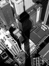 Über den Dächern Aucklands