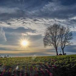 Wetter | Tag der Sonne