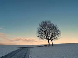 Später Winter