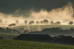 Nebelwallen 3