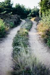 Der Weg und das Ziel und so...