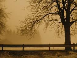 Zweisam Einsam