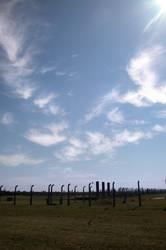Himmel über Birkenau