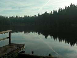 Etang de Gruère – Water Reflections I