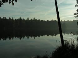 Étang de Gruère - Water Reflections II