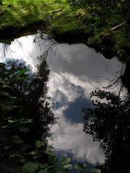 Die Natur ist nicht realistisch, sondern impressionistisch